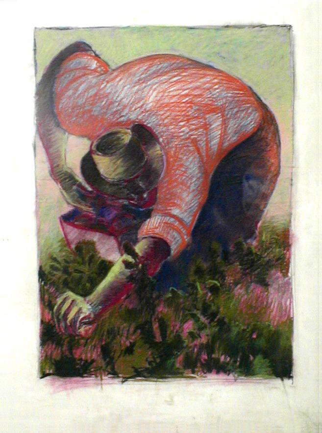 Pastel on Paper - Del Nero Artwork, LLC