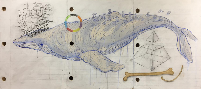 whale-progress-crop1500